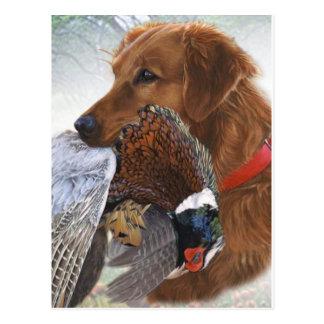 Labrador Retriever The Ultimate Bird Dog Postcard