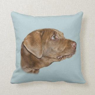 Labrador Retriever Throw Pillow, Customizable Throw Pillow