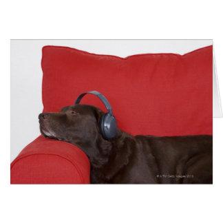 Labrador wearing headphones lying on sofa card