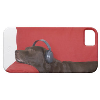 Labrador wearing headphones lying on sofa iPhone 5 cover