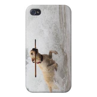 Labrador - Yellow - Go Fetch! iPhone 4 Case