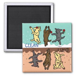 Labradors de danse heureux propre/sale