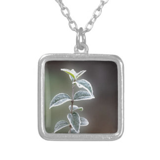 lace on leaves silver plated necklace