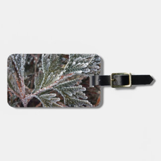Lace on twigs luggage tag