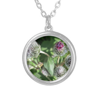 lace over thistle silver plated necklace