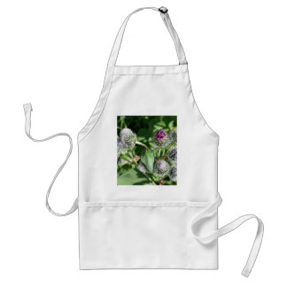 lace over thistle standard apron