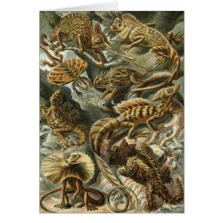Lacertilia by Ernst Haeckel Vintage Lizard Animals Card