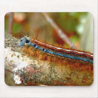 Lackey Moth Caterpillar Mouse Mat Mouse Pad