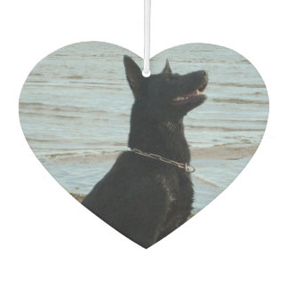 Lacquer Black GSD at the Beach Car Air Freshener