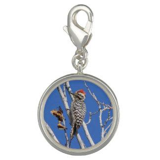 Ladder-backed Woodpecker Photo Charm