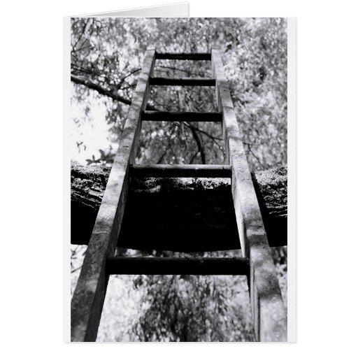 Ladder Greeting Cards
