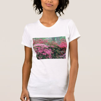 Ladies' Azalea T-Shirt