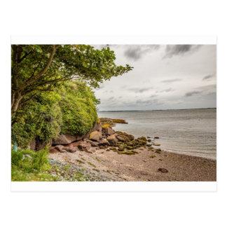 """""""Ladies Cove"""", Ireland postcard"""