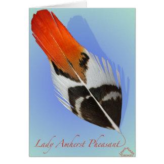 Lady Amherst Pheasant Flank Card