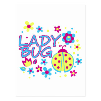 Lady bug design postcard