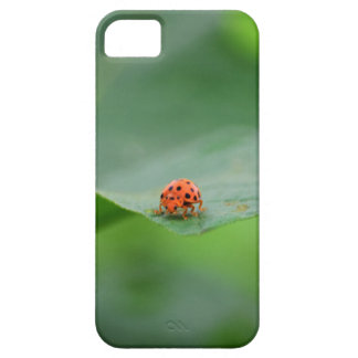 LADY BUG ON LEAF AUSTRALIA iPhone 5 CASE