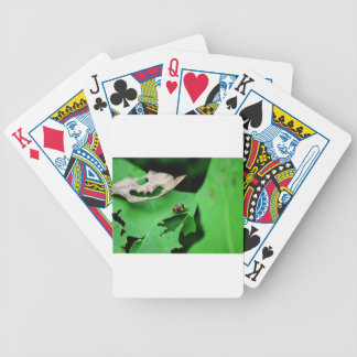 LADY BUG ON LEAF AUSTRALIA POKER DECK