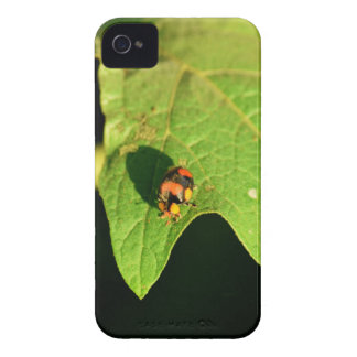 LADY BUG ON LEAF QUEENSLAND AUSTRALIA Case-Mate iPhone 4 CASES