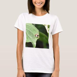 LADY BUG ON LEAF QUEENSLAND AUSTRALIA T-Shirt