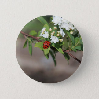 Lady Bug resting near so white flowers in bloom 2 Inch Round Button