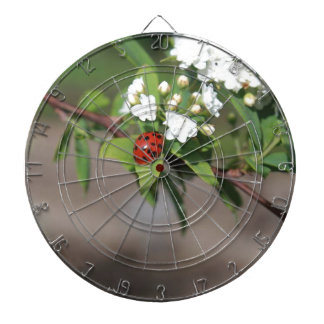 Lady Bug resting near so white flowers in bloom Dartboard
