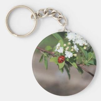 Lady Bug resting near so white flowers in bloom Keychain
