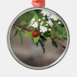 Lady Bug resting near so white flowers in bloom Metal Ornament