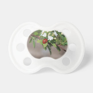 Lady Bug resting near so white flowers in bloom Pacifier