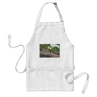Lady Bug resting near so white flowers in bloom Standard Apron