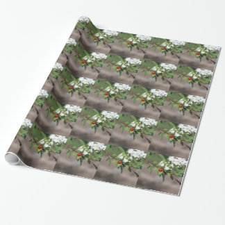 Lady Bug resting near so white flowers in bloom Wrapping Paper