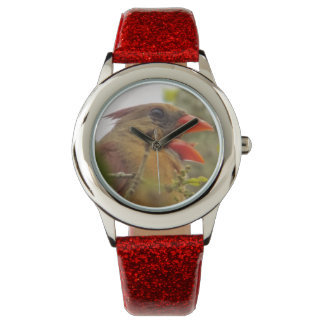 Lady Cardinal Watch