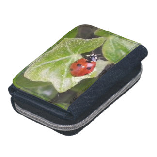 Lady nose ladybird purse purse wallets