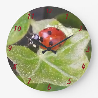 Lady nose ladybird round (large) clock