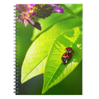 Lady nose Love Spiral Notebook