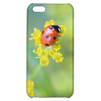 lady on top iPhone 5C cases