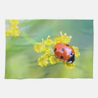 lady on top kitchen towel