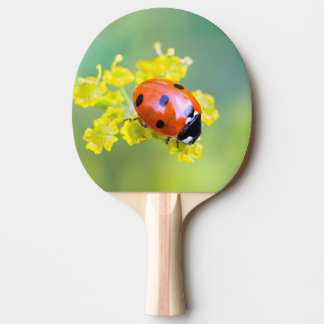 lady on top ping pong paddle