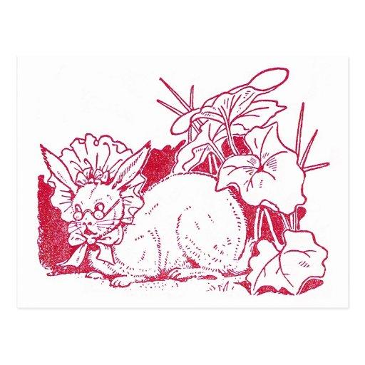 Lady Rabbit Wearing Glasses Post Card