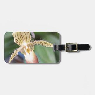 Lady Slipper Bag Tag