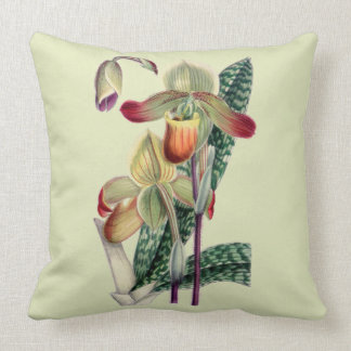Lady Slipper Orchid Celadon Throw Pillow
