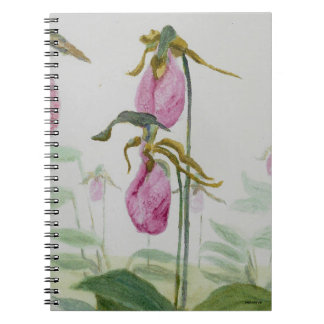 Lady Slippers Notebooks