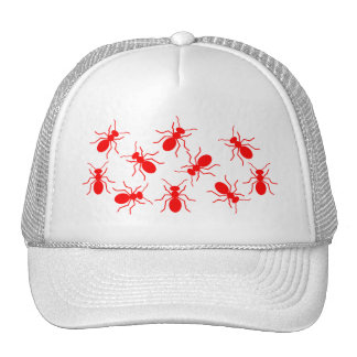 Lady Trucker Funny Hat with Red Ants