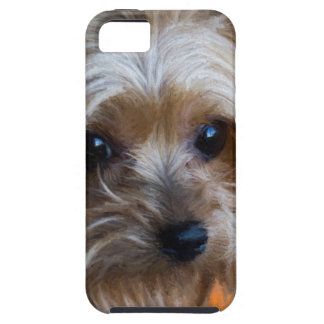 Lady Yorkshire Terrier iPhone 5 Case