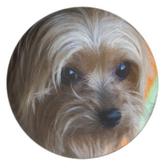 Lady Yorkshire Terrier Plates