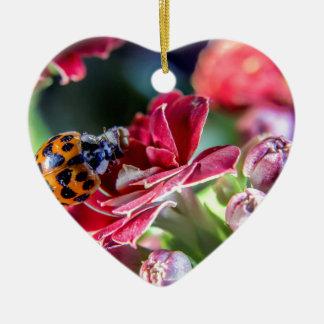 Ladybird Ceramic Heart Ornament