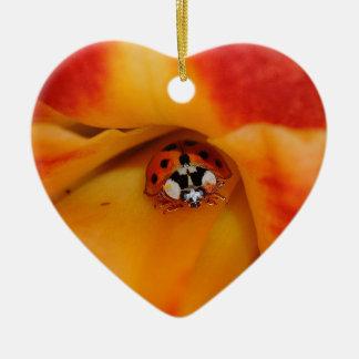Ladybird Ceramic Ornament