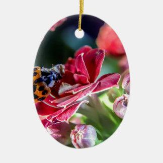 Ladybird Ceramic Oval Ornament