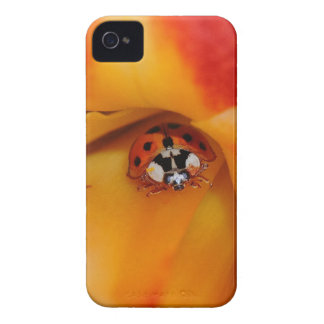 Ladybird iPhone 4 Case-Mate Cases