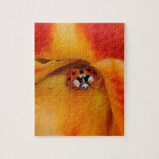 Ladybird Jigsaw Puzzle