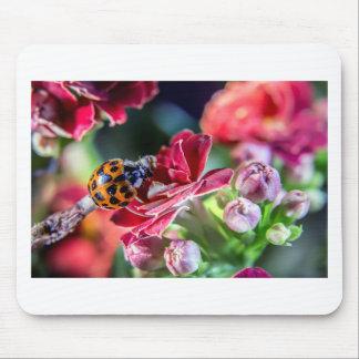 Ladybird Mouse Pad